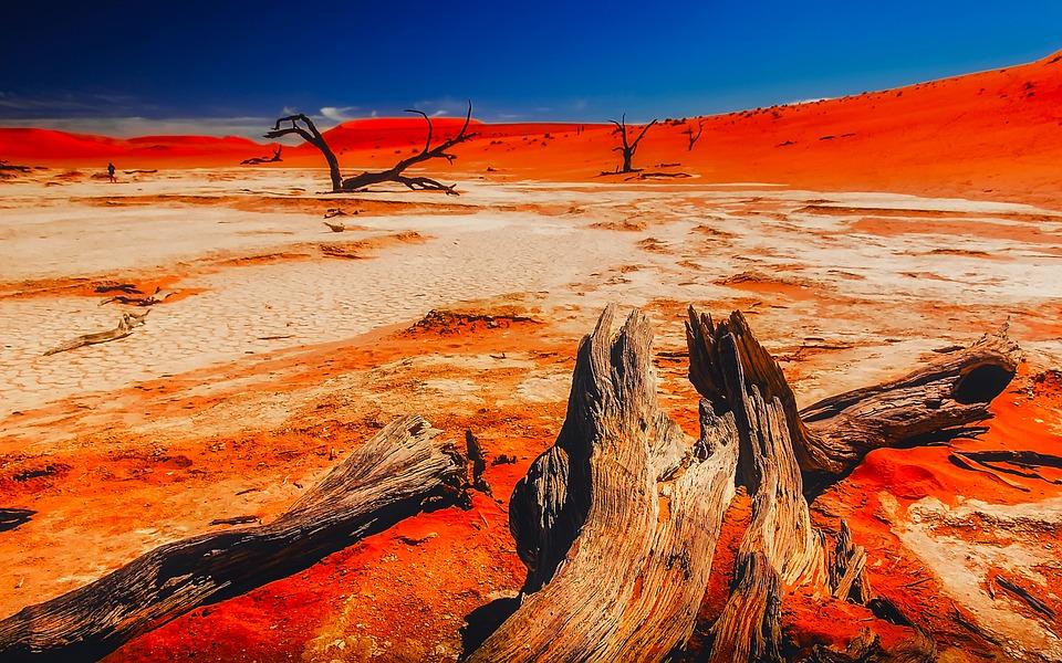 Désert de Namibie 2