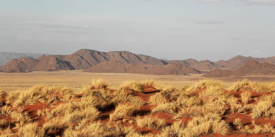 Parc National Namib-Naukluft