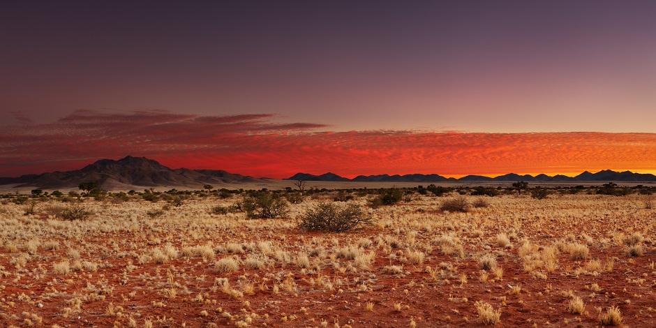 Immersion dans les incontournables de la Namibie en 17J