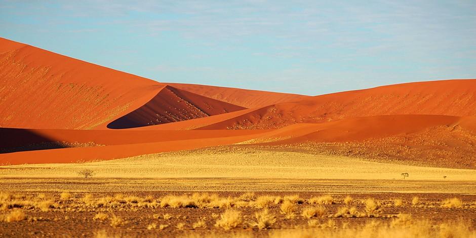 Dunes de Vlei