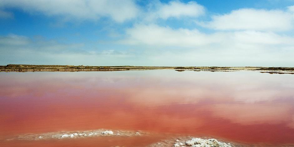 Lac salé rouge près de Walvis Bay