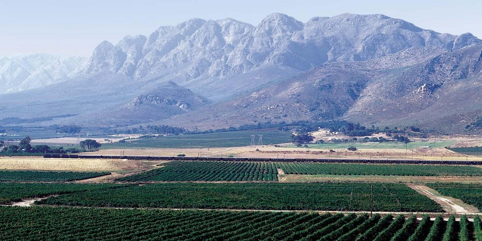 Dans la campagne sud-africaine